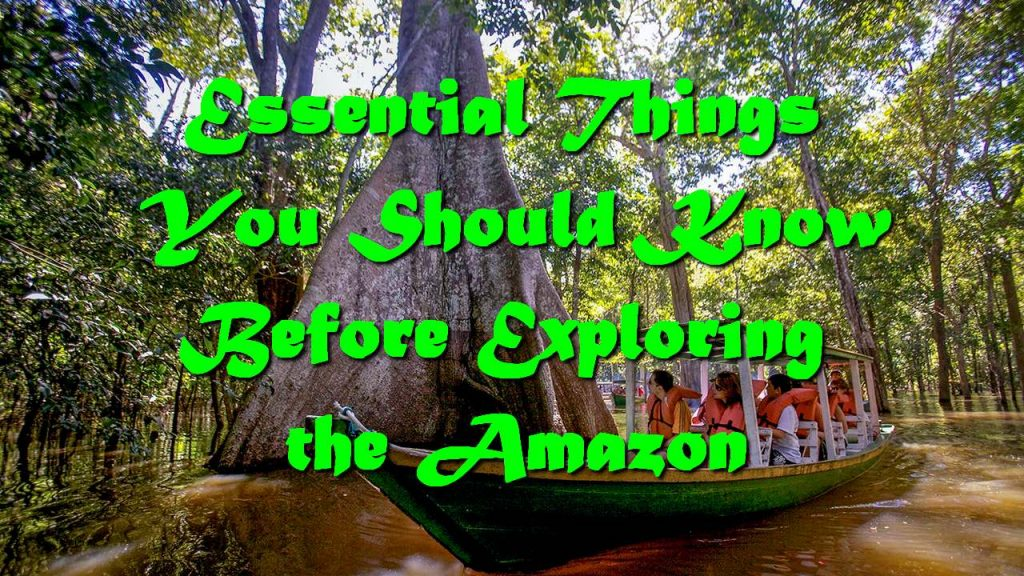 Essential Things You Should Know Before Exploring the Amazon